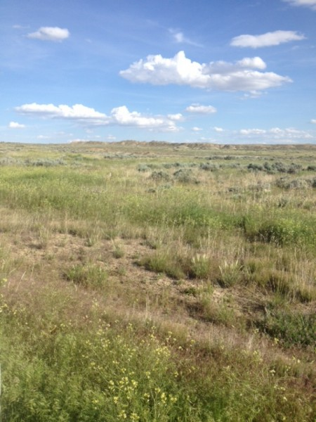 Wyoming Land for Sale